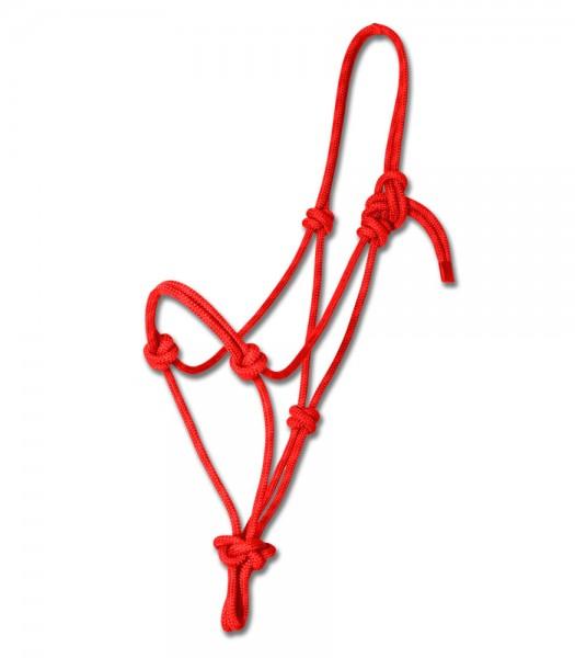 Paretti Rope Halfter - der Klassiker © Waldhausen GmbH