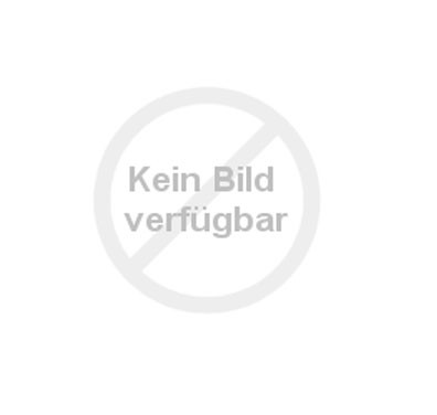 Kopfeisen SOLIBEL © BUSSE GmbH