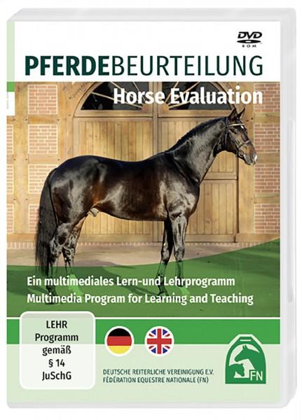 Software 'Pferdebeurteilung/Horse Evaluation' © BUSSE GmbH