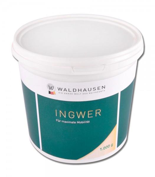 Ingwer 1 kg - Entzündungshemmend © Waldhausen GmbH